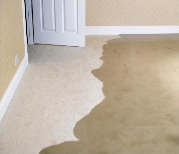 Water Damage Our Water Damage Restoration Process Will Restore Your Home In Chicago