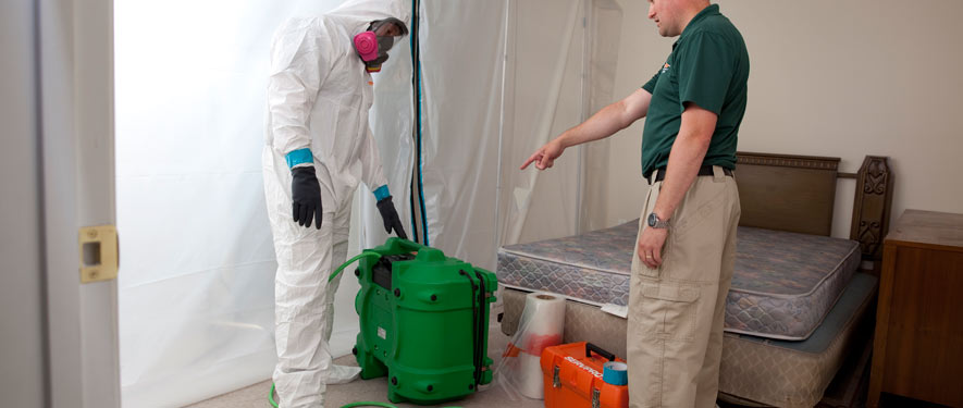 Chicago, IL mold removal process
